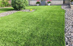 Kunstgras of echt gras