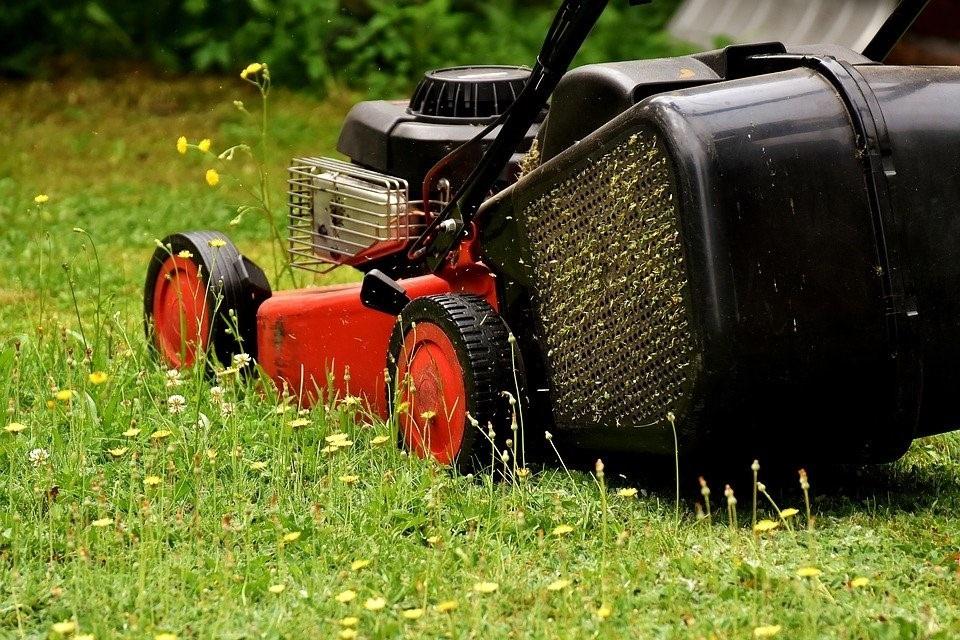 Kunstgras of toch maar gewoon echt gras in de tuinoch maar gewoon echt gras in de tuin